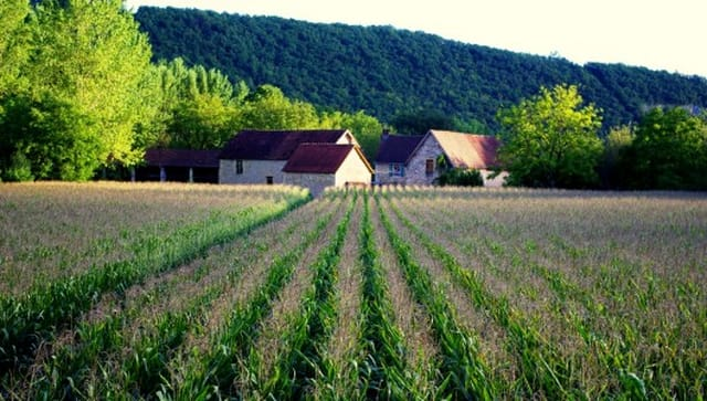Superb Gite and B&B Complex for sale on 6 ha with pool and gites on ...